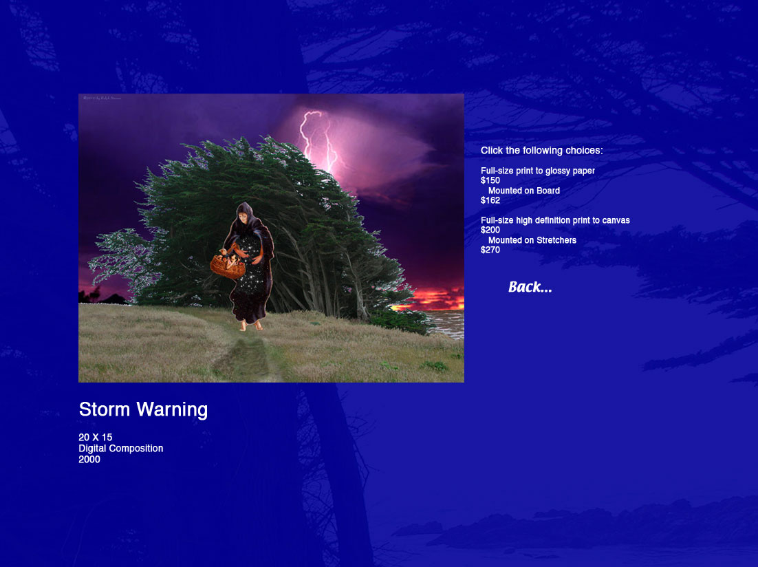 Storm Warning, 20 X 15 Digital composition, 2000.  Click the following choices: Full-size print to glossy paper, $150; Mounted on board, $162; Full-size high definition print to canvas, $200; Mounted on stretchers, $270